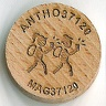 Wood Geocoin